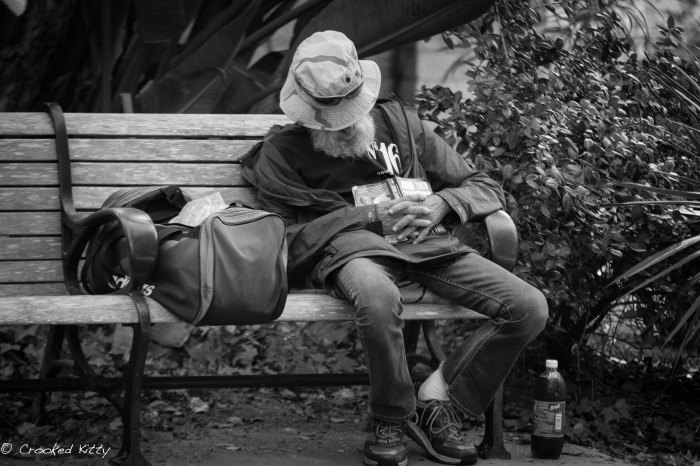 Old man passed out on a bench in  Balboa Park